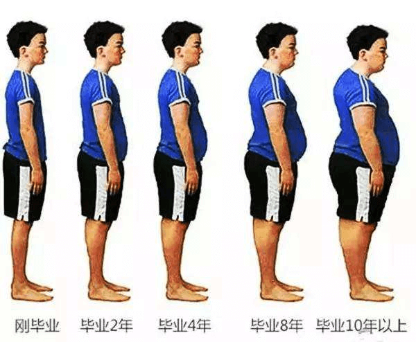减肥原理,减肥功效,瘦身